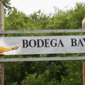 Addicted to Bodega Bay? Us too. 5 reasons we just can't get enough