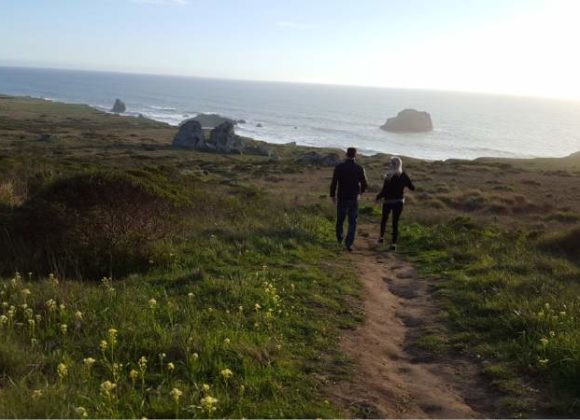VISITING BODEGA BAY'S Kortum Trail