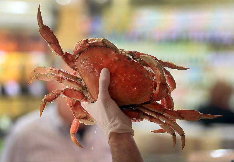 Salmon and Crab Season 2019